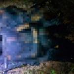 Corpos são encontrados carbonizados, dentro da mata, perto da Ponte Rio Negro