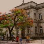 Iniciativa busca salvar prédio histórico da Santa Casa de Misericórdia que chama a atenção de turistas